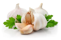 Польза чеснока при кисте щитовидной железы