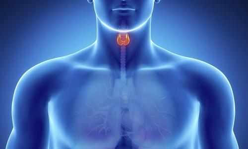 Проблема кисты на щитовидной железе