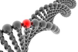 Генетическая предрасположенность - причина развития кисты