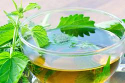 Лечение кисты щитовидной железы травяными чаями