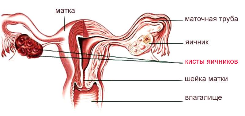 Боль в левой части спины под лопаткой и руке